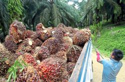 Sabah's ripe for progress