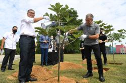 Malaysia committed to ensuring at least half of country is covered with forests