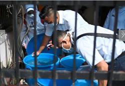 Dengue threat still looms