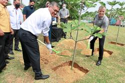 Nestle to plant three million trees by 2023