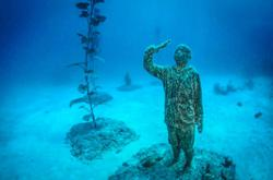 Dive into this underwater museum to learn about art and ocean conservation
