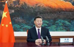 President Xi opposes