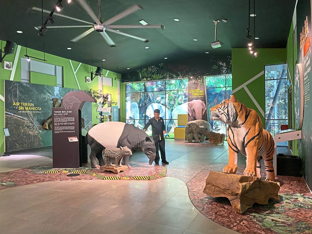 The new Rainforest Discovery Centre features an exhibition area.