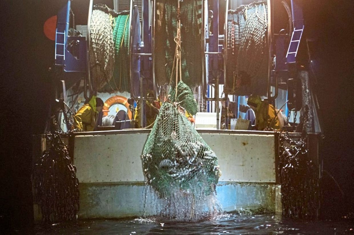 The picture is equally dire in the ocean, where 75% of fish stocks are over exploited.