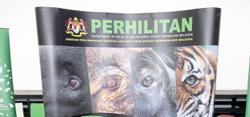 Perhilitan on hunt for man who sprayed paint on monkey