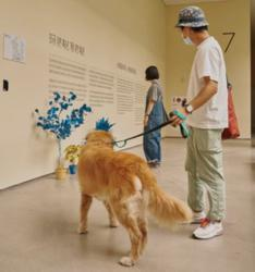This exhibition in South Korea is for art lovers and their dogs
