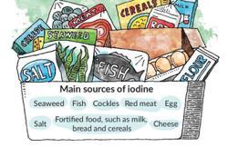 Iodine to salt deadline now on Dec 31