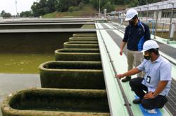 Air Selangor says unable to determine estimated water supply recovery period