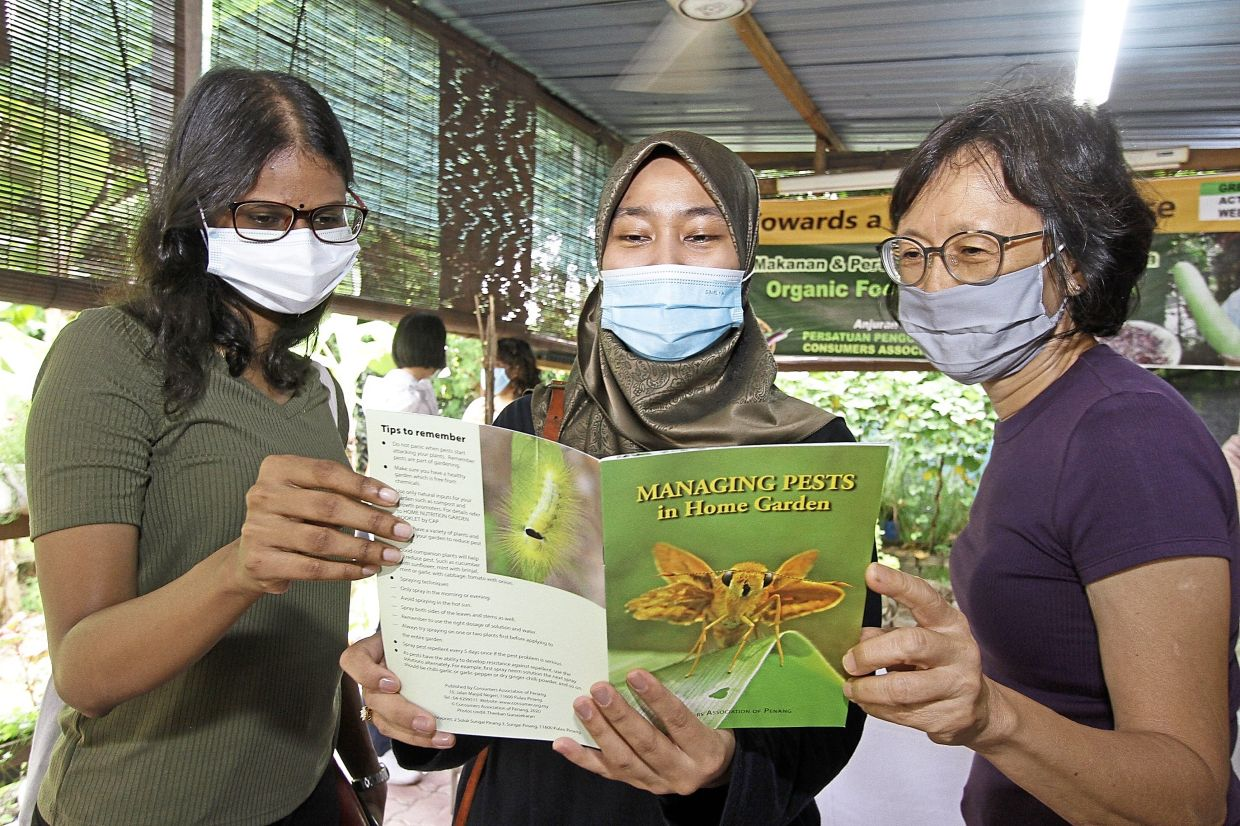 (From left) Mirosha, Nur Izzah and housewife Chuah Choo Gaik, 57, looking at the 'Managing Pests in Home Gardens' guidebook.
