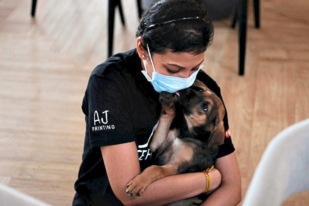 Navi, pictured with a rescued dog, volunteers at several  animal shelters. Photo: Navi Indran Pillai