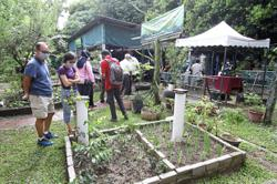 Uptrend for urban farming