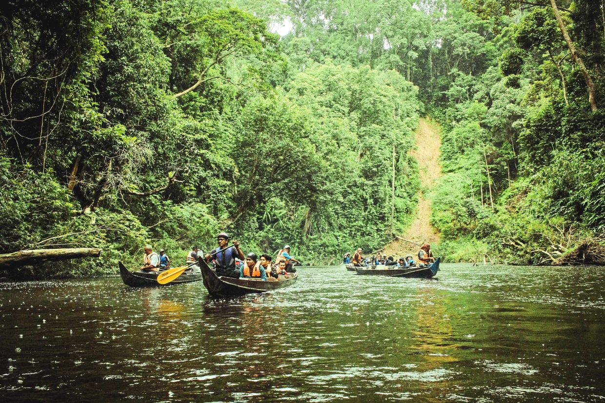 The beauty of Taman Negara in Pahang is off limits to visitors for now.  — Filepic