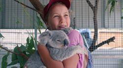 Teen 'koala whisperer' fast becoming Australias new conservation superstar