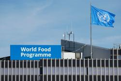 What is the World Food Programme, and what does it do?