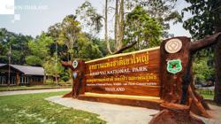 Flash flood, run-offs force temporary closure of Thailand's national park