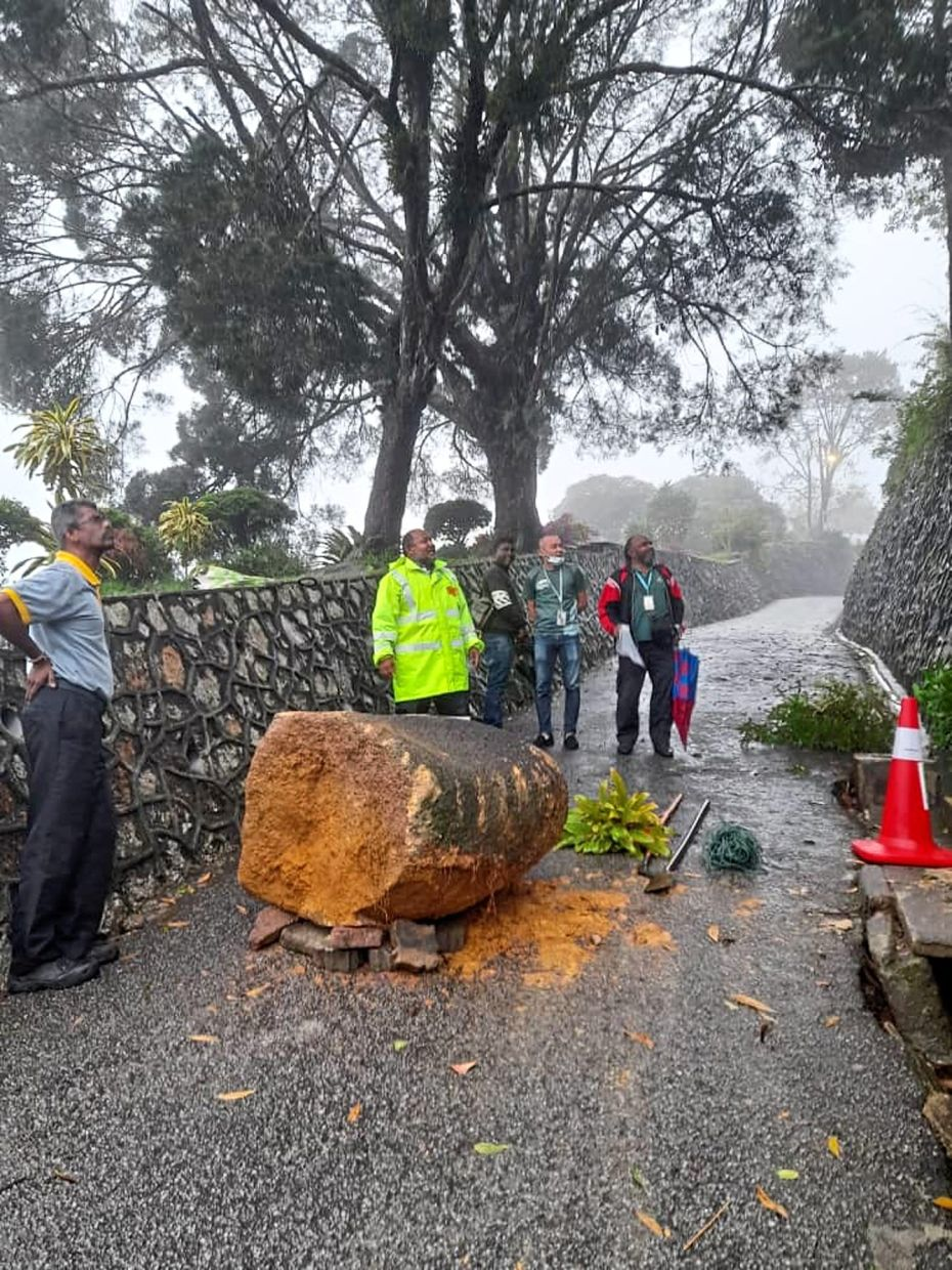 The boulder coming to rest on a path after rolling down a slope in Penang Hill on Wednesday during heavy rain.