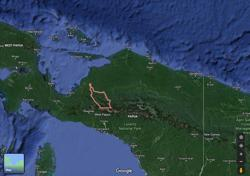Indonesian team probing deadly Papua shootings attacked