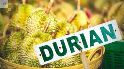 Thai Monthong faces Malaysia's 'King' in battle for China's Bt50bn durian market