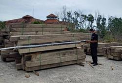 RM1.96mil's worth of illegal teak wood from Myanmar seized in Batu Pahat