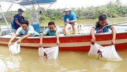 Preserving Johor's river ecosystems