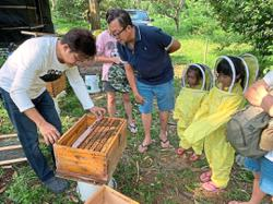 Call beekeepers to transfer, not destroy, beehives
