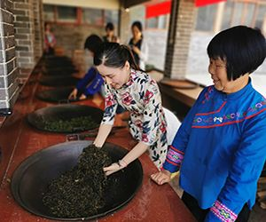 Tea expert Wei Jiequn (right) passes on traditional tea-processing techniques to her daughter, Shi Rufei. Credit: Wang Kaihao/ China Daily