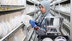 Flex offering 3,500 job opportunities for M'sians