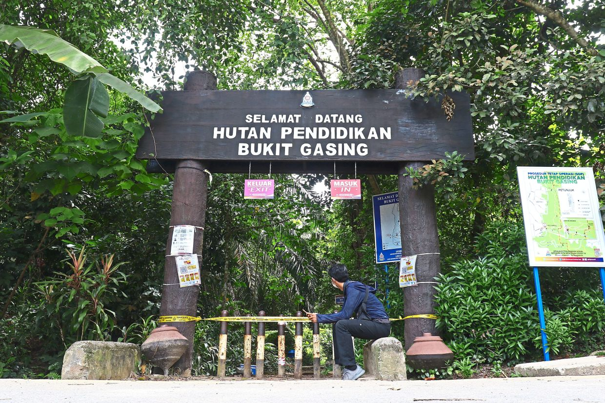 A man looking at the signs placed at the main entrance to Bukit Gasing Forest Park, Petaling Jaya, which was sealed off as a preventive measure during the conditional MCO.