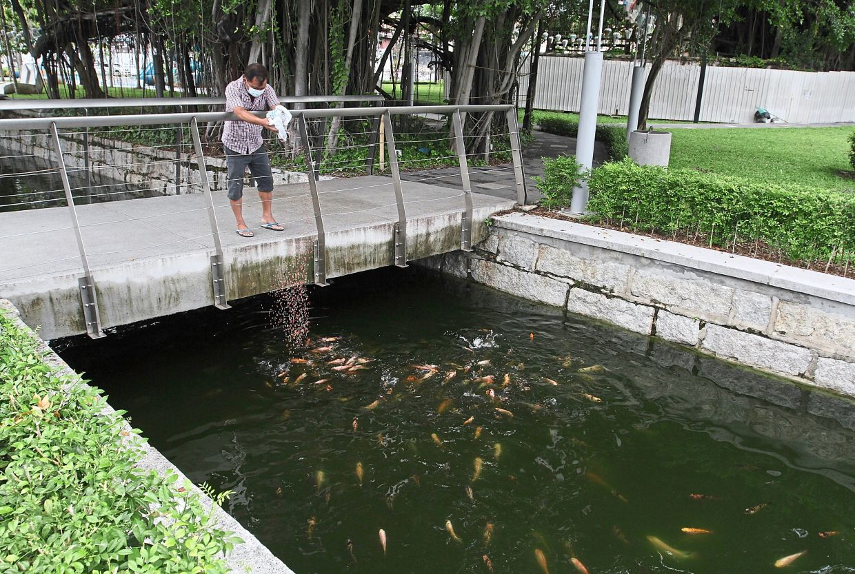 A visitor pouring fish food into the canal although the act is not encouraged at the Sia Boey Urban Archaeological Park in Penang.— Photos: ZHAFARAN NASIB/The Star