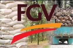 FGV awaiting Felda to discuss land lease agreement