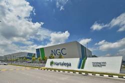 Hartalega 2Q net profit jumps more than 4-fold to RM545m