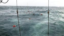 Two dead after collision at sea