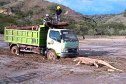 'Komodo dragons will be protected'