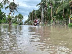 Three dead, dozen missing in typhoon
