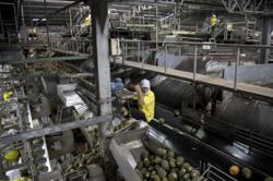 Thailand's September factory output falls 2.75 per cent