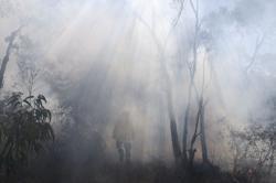 Australia needs national response to 'alarming' disaster future - enquiry