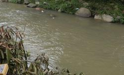 Teen missing after falling into Skudai river