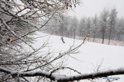 Snowstorms ground flights, shut highways in northeast China