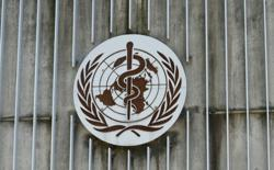 WHO welcomes COVID-19 immunity study, gives hopes for vaccines