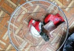 Sg Petani trader dies as defective fire extinguisher explodes