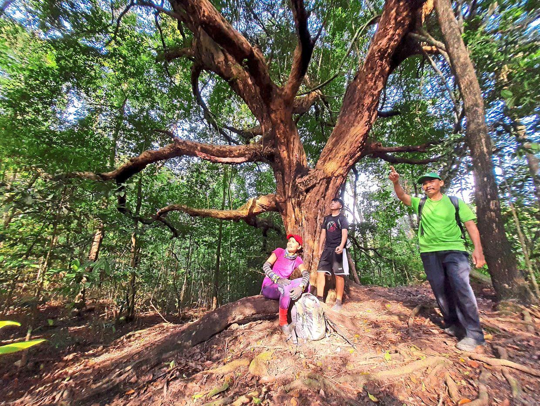 (From left) Trekkers Monica Ann @ Siw Eng, 47, her son Michael Woon Jason, 21, and their friend Hairi, 49, exploring the wonders at Bukit Seraya in Bukit Mertajam.