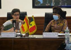 Spain to send more police to Senegal to curb illegal migration, says foreign minister