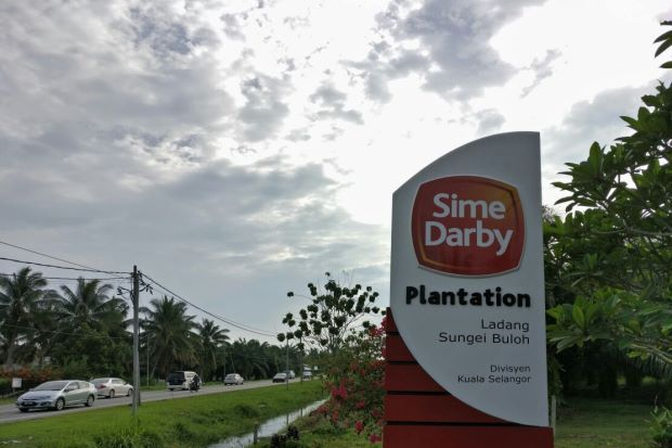 Had it not been for FV loss on biological assets of its Papua New Guinea sugar assets (-RM24mil) and impairment of its plantation assets (-RM17mil), its3Q results would have been even better.