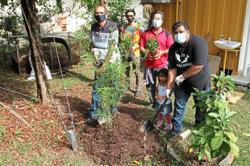 Planting trees to offset carbon footprint