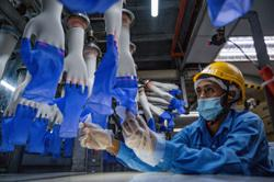 Top Glove ramps up production at plants outside Klang