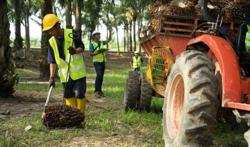 CPOPC: AP report out to harm image of palm oil industry