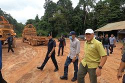 Johor authorities investigate report of illegal logging at Lenggor Forest Reserve