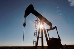 Oil rises past August high on vaccine progress