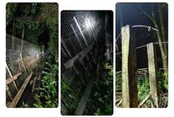 Suspension bridge cable in Ranau snaps, seven fall off, two hospitalised