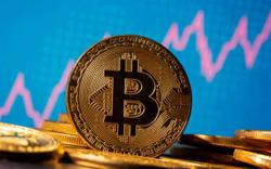 Bitcoin plummets to 10-day low, dragging smaller cryptocurrencies down